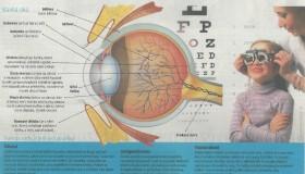 TIP: Lidové noviny se ve speciální příloze zaměřují na dětský zrak